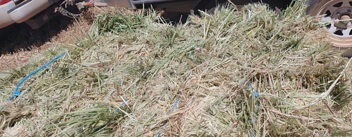 19-20 Season Hay - Dingee, Victoria 3571